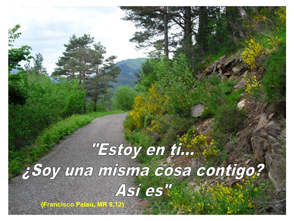 (Francisco Palau, MR 9,12)