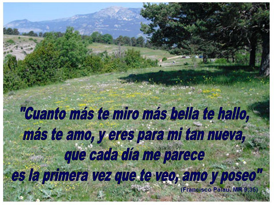 (Francisco Palau, MR 9,35)