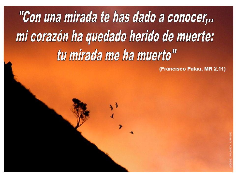(Francisco Palau, MR 2,11)