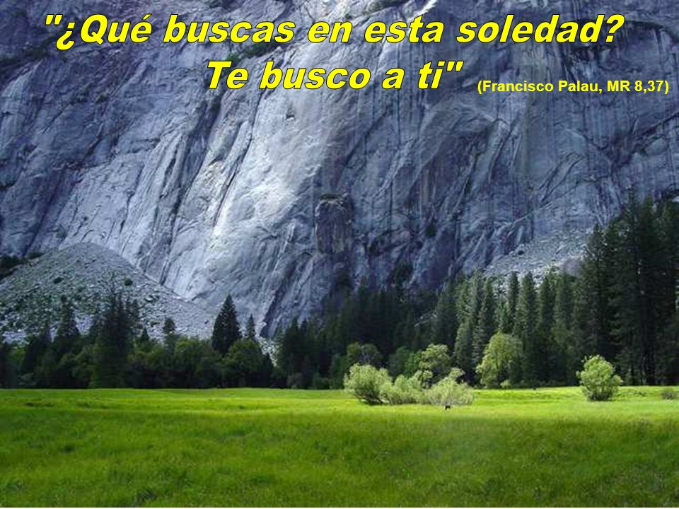 (Francisco Palau, MR 8,37)