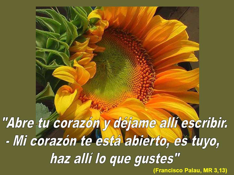 (Francisco Palau, MR 3,13)