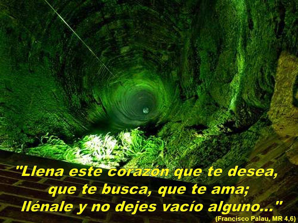 (Francisco Palau, MR 4,6)