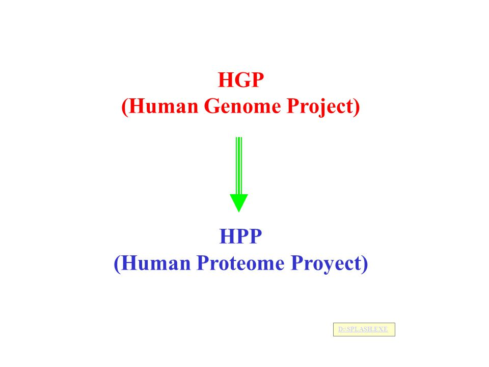 HGP (Human Genome Project) HPP (Human Proteome Proyect) D:\SPLASH.EXE