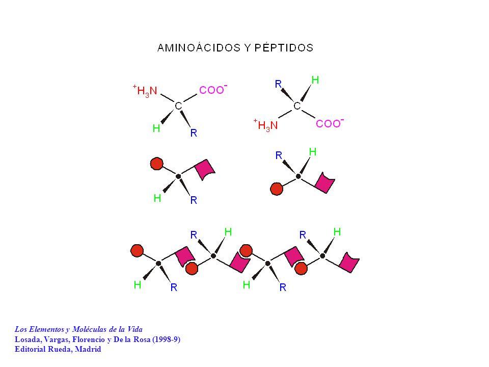 Los Elementos y Moléculas de la Vida Losada, Vargas, Florencio y De la Rosa (1998-9) Editorial Rueda, Madrid