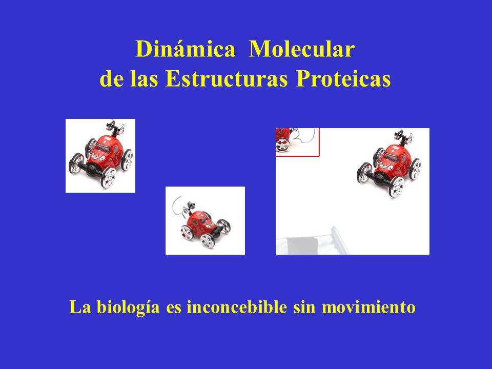 Dinámica Molecular de las Estructuras Proteicas La biología es inconcebible sin movimiento