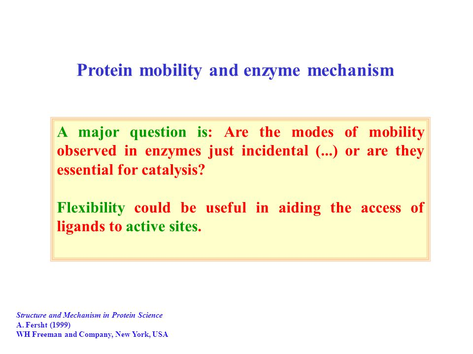 A major question is: Are the modes of mobility observed in enzymes just incidental (...) or are they essential for catalysis.