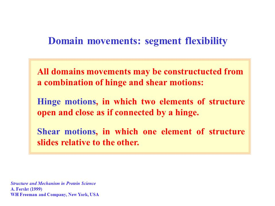 Domain movements: segment flexibility Structure and Mechanism in Protein Science A.