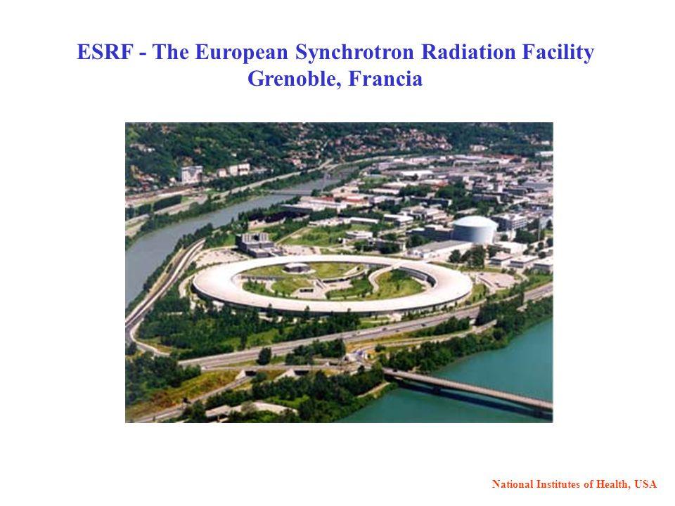 ESRF - The European Synchrotron Radiation Facility Grenoble, Francia National Institutes of Health, USA