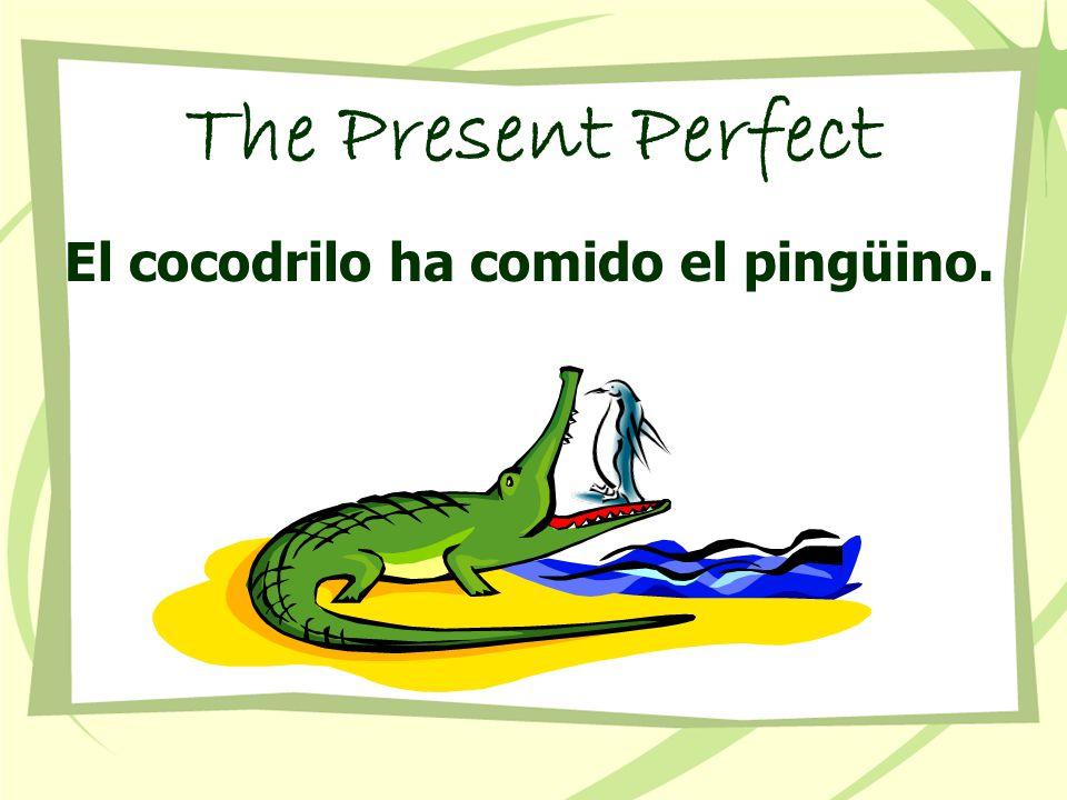 The Present Perfect El cocodrilo ha comido el pingüino.