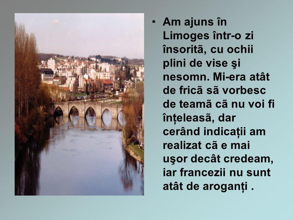 Am ajuns în Limoges într-o zi însoritã, cu ochii plini de vise şi nesomn.