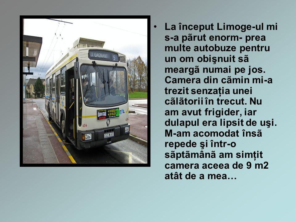La început Limoge-ul mi s-a pãrut enorm- prea multe autobuze pentru un om obişnuit sã meargã numai pe jos.