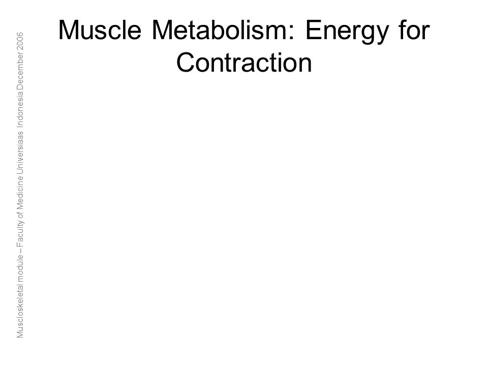Muscloskeletal module – Faculty of Medicine Universiaas Indonesia December 2006 Muscle Metabolism: Energy for Contraction