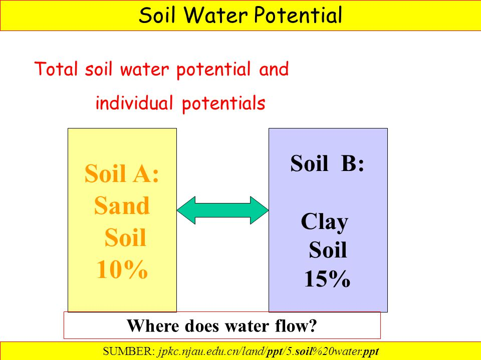 Soil Water Potential Total soil water potential and individual potentials Soil A: Sand Soil 10% Soil B: Clay Soil 15% Where does water flow.