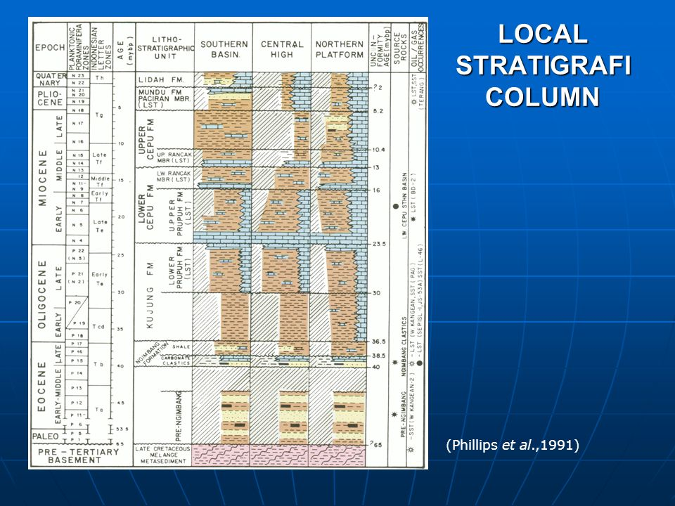 LOCAL STRATIGRAFI COLUMN (Phillips et al.,1991)