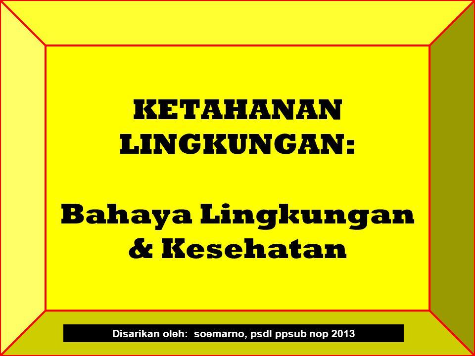 KETAHANAN LINGKUNGAN: Bahaya Lingkungan & Kesehatan Disarikan oleh: soemarno, psdl ppsub nop 2013