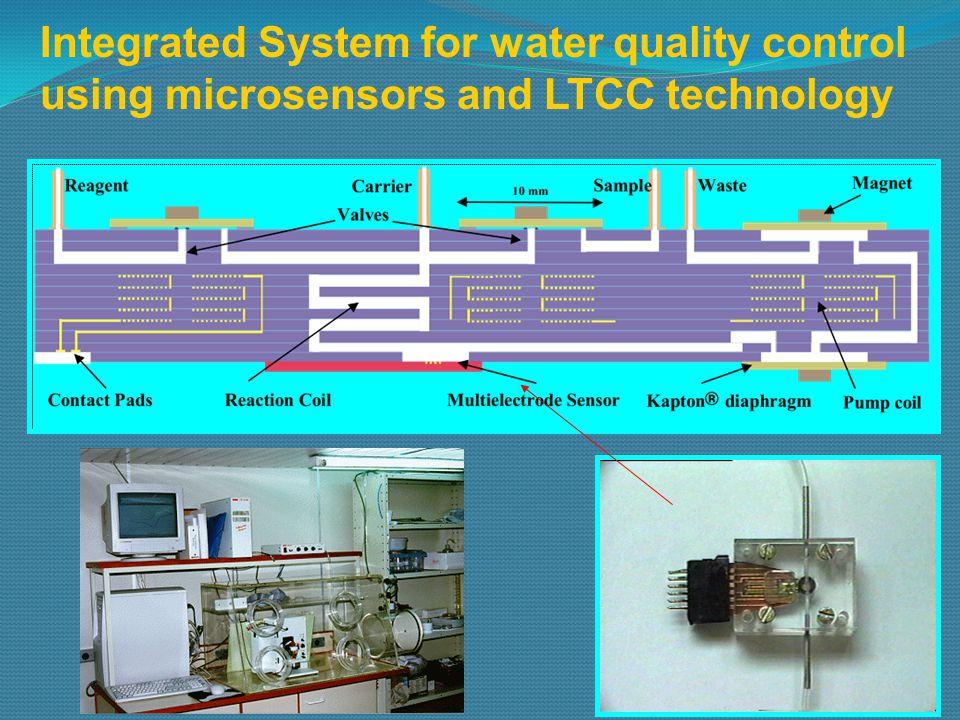 Bio-chemical NO sensor in vivo measurement