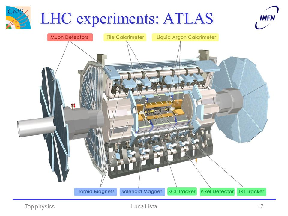 LHC experiments: ATLAS Top physicsLuca Lista17
