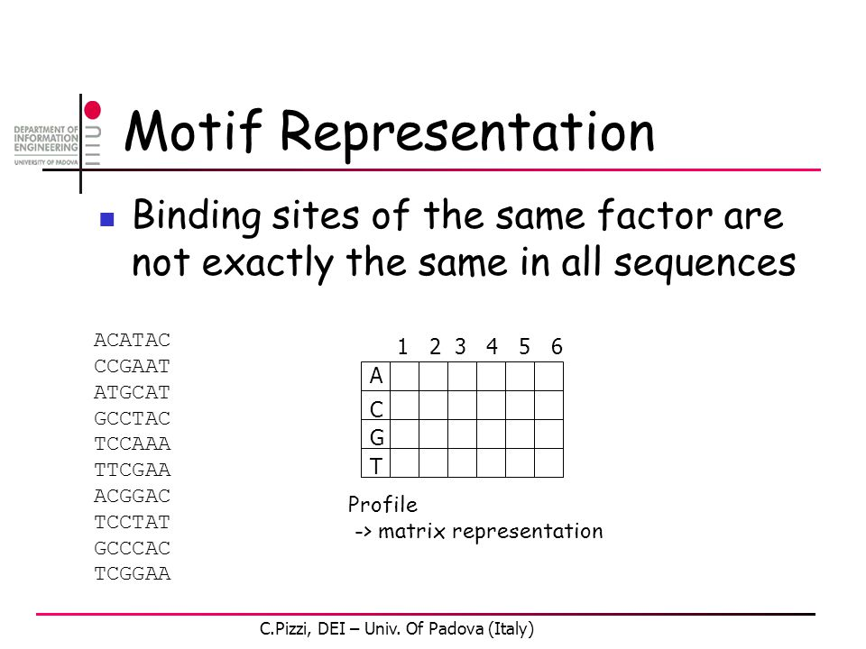 Motif Representation Binding sites of the same factor are not exactly the same in all sequences ACATAC CCGAAT ATGCAT GCCTAC TCCAAA TTCGAA ACGGAC TCCTAT GCCCAC TCGGAA 1 2 3 4 5 6 A G C T Profile -> matrix representation C.Pizzi, DEI – Univ.