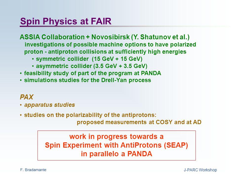 F. BradamanteJ-PARC Workshop SEAP IP