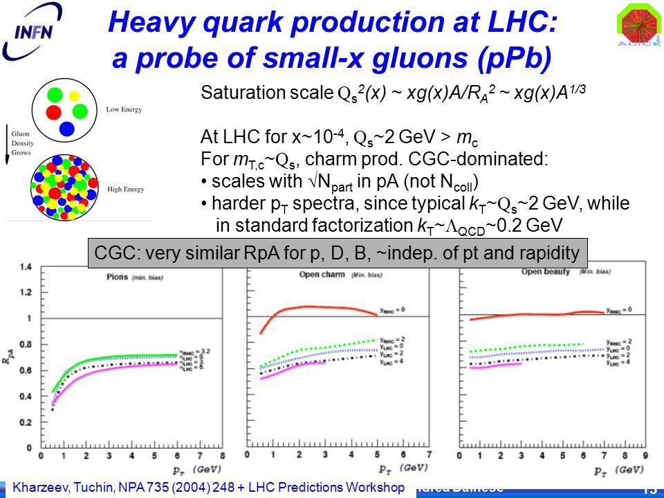 IV Convegno Nazionale Fisica ALICE, Palau, 29.09.08 Andrea Dainese 13 Saturation scale Q s 2 (x) ~ xg(x)A/R A 2 ~ xg(x)A 1/3 At LHC for x~10 -4, Q s ~2 GeV > m c For m T,c ~ Q s, charm prod.