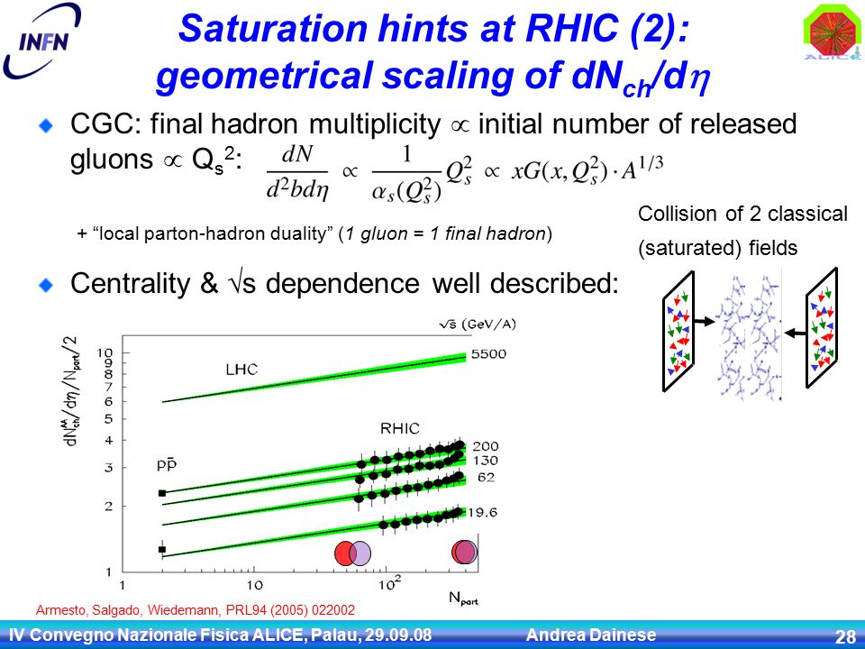 IV Convegno Nazionale Fisica ALICE, Palau, 29.09.08 Andrea Dainese 28 Saturation hints at RHIC (2): geometrical scaling of dN ch /d  CGC: final hadron multiplicity  initial number of released gluons  Q s 2 : Centrality & √s dependence well described: + local parton-hadron duality (1 gluon = 1 final hadron) Collision of 2 classical (saturated) fields Armesto, Salgado, Wiedemann, PRL94 (2005) 022002