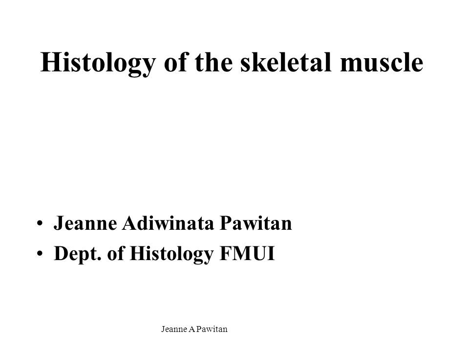 Jeanne A Pawitan Histology of the skeletal muscle Jeanne Adiwinata Pawitan Dept. of Histology FMUI