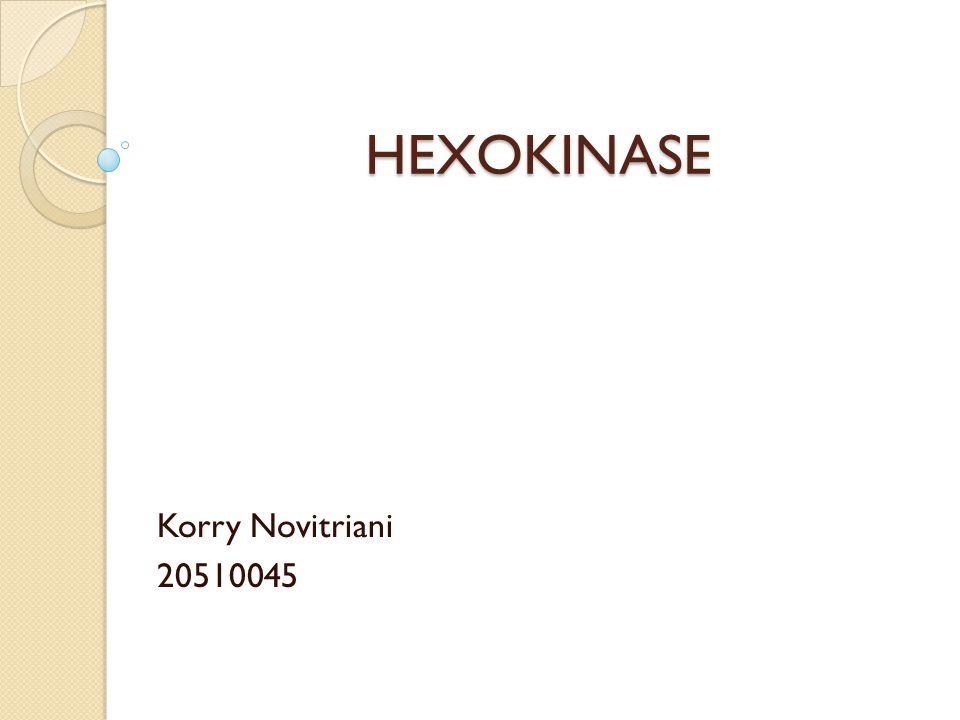 HEXOKINASE Korry Novitriani 20510045