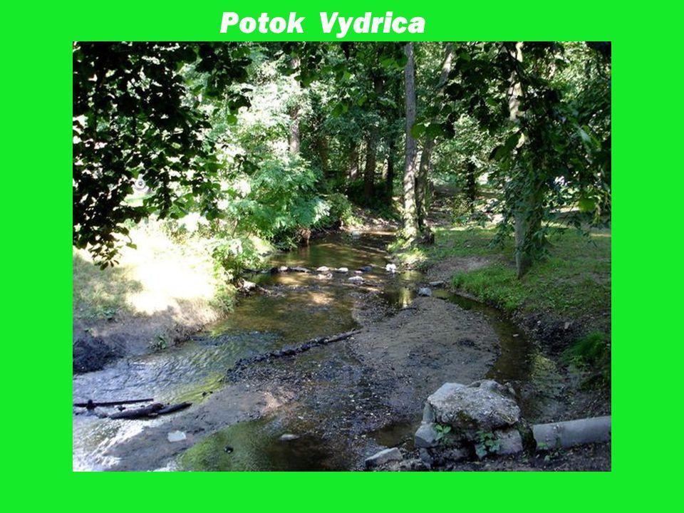 Potok Vydrica