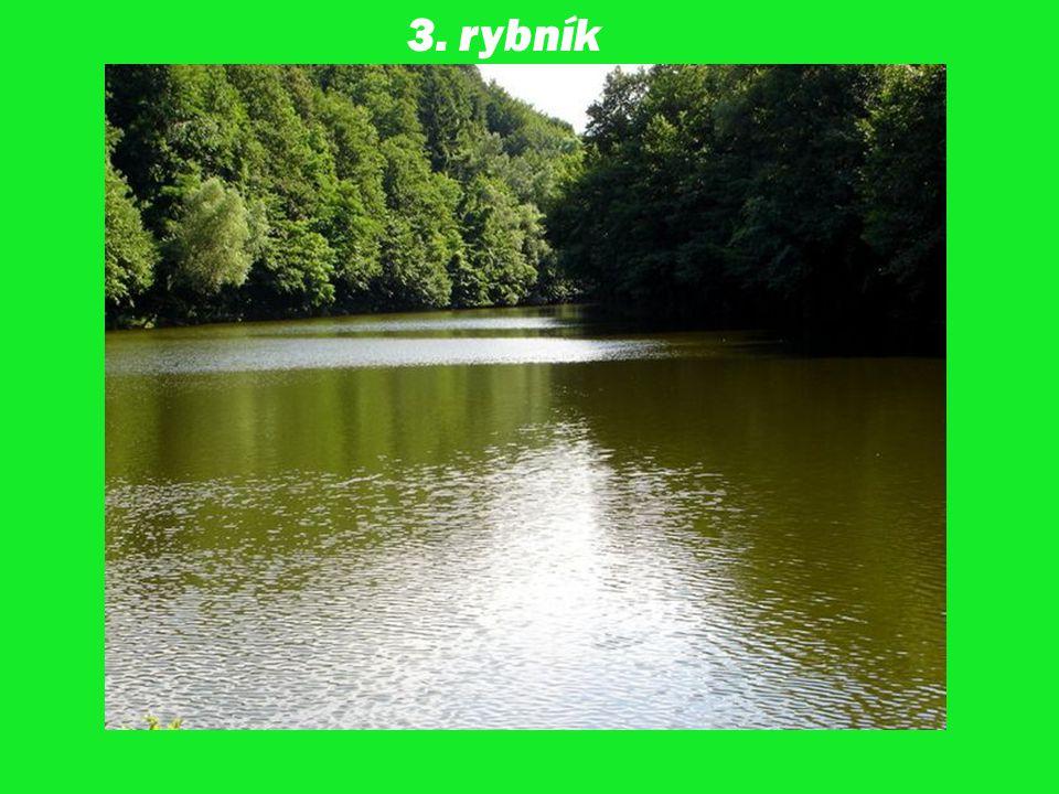 3. rybník