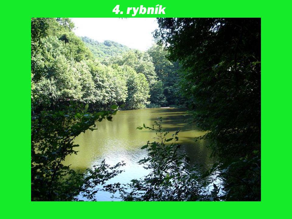 4. rybník