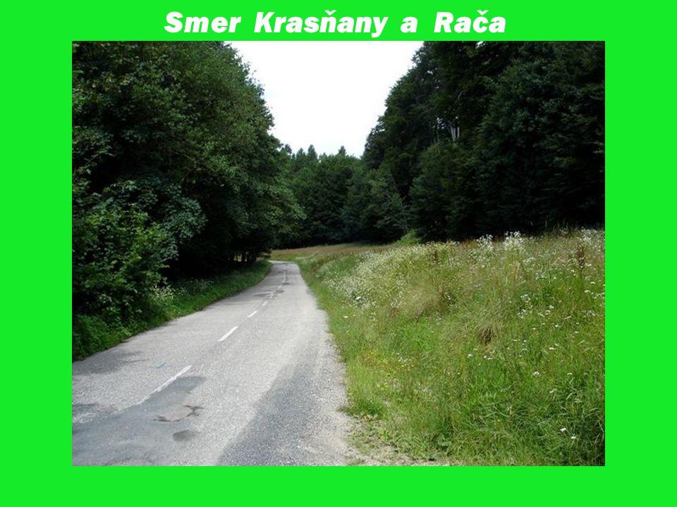 Smer Krasňany a Rača