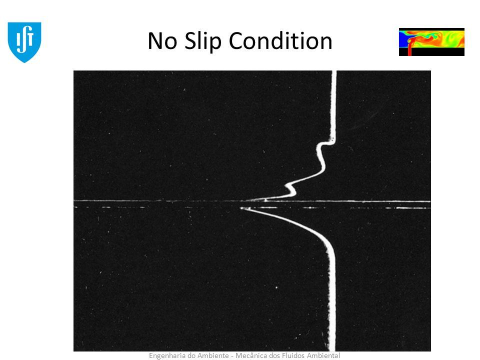 Engenharia do Ambiente - Mecânica dos Fluidos Ambiental No Slip Condition