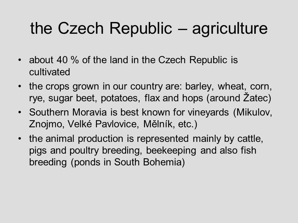 the Czech Republic – agriculture about 40 % of the land in the Czech Republic is cultivated the crops grown in our country are: barley, wheat, corn, rye, sugar beet, potatoes, flax and hops (around Žatec) Southern Moravia is best known for vineyards (Mikulov, Znojmo, Velké Pavlovice, Mělník, etc.) the animal production is represented mainly by cattle, pigs and poultry breeding, beekeeping and also fish breeding (ponds in South Bohemia)