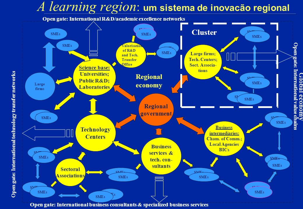 análise: sistemas regionais fragmentados Regional Government Business Services SMEs Chamber of Commerce SMEs Large firms SMEs Universities Technology Centers Sectoral Associations SMEs Large firms SMEs Technology Consultants SMEs Large firms SMEs Regional economy