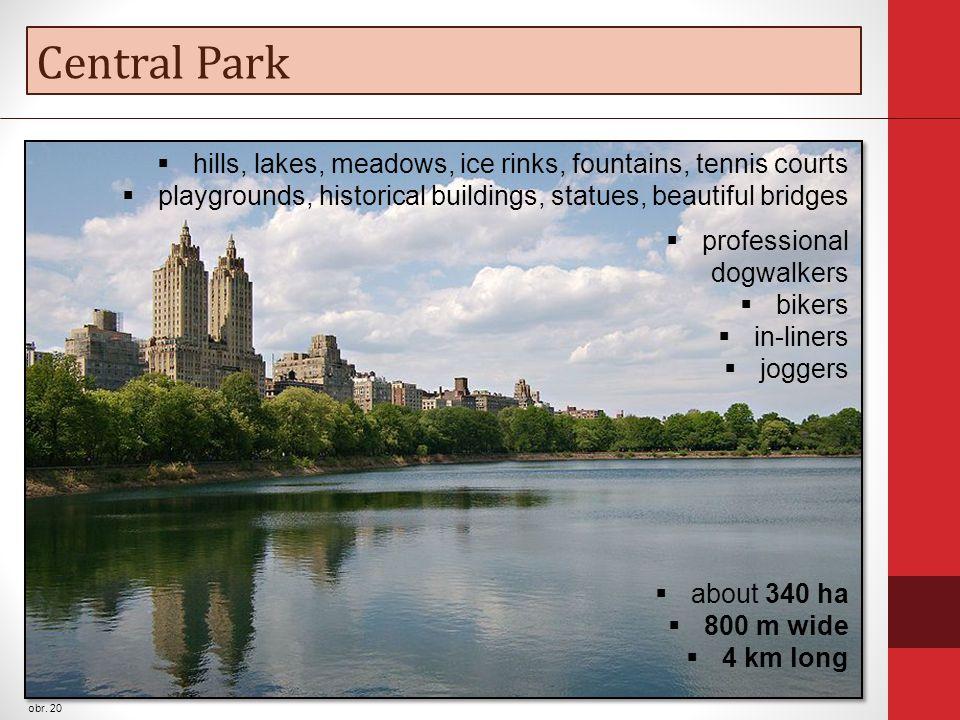 Central Park obr.