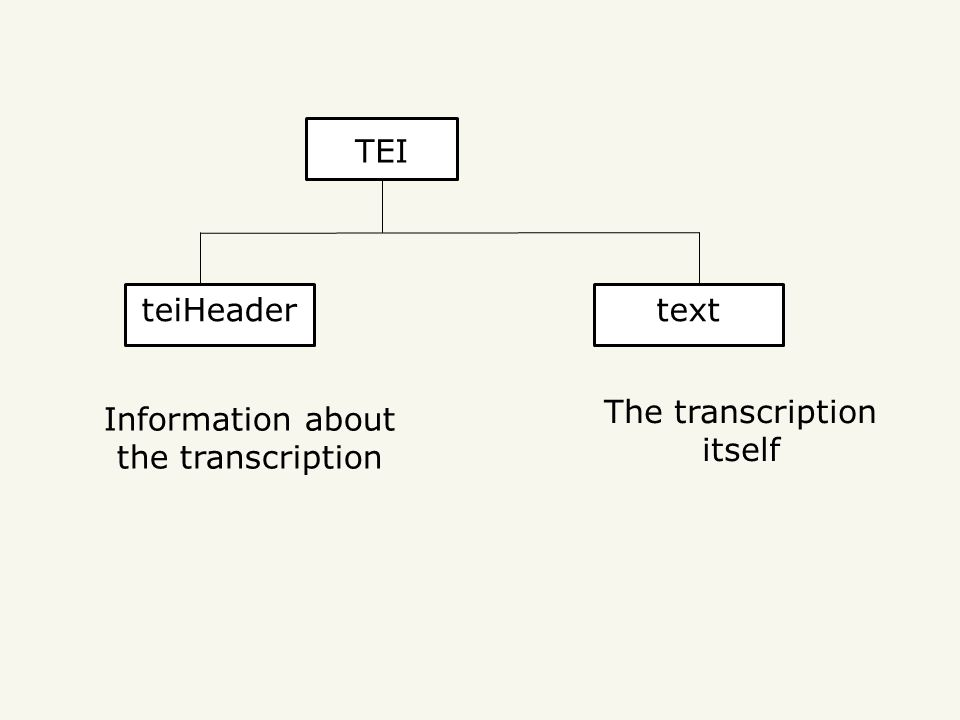 TEI teiHeadertext The transcription itself Information about the transcription