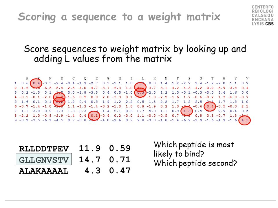 Score sequences to weight matrix by looking up and adding L values from the matrix A R N D C Q E G H I L K M F P S T W Y V 1 0.6 0.4 -3.5 -2.4 -0.4 -1