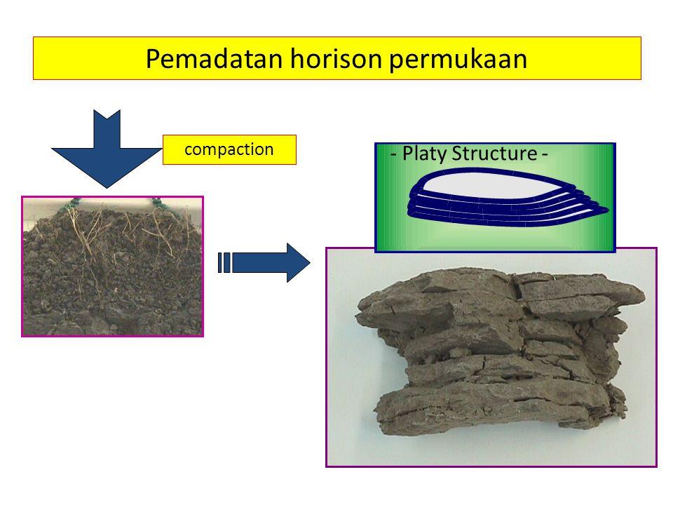 Pemadatan horison permukaan - Platy Structure - compaction