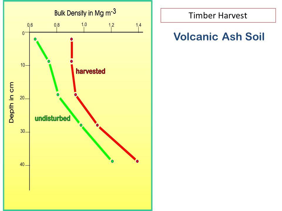 Volcanic Ash Soil Timber Harvest