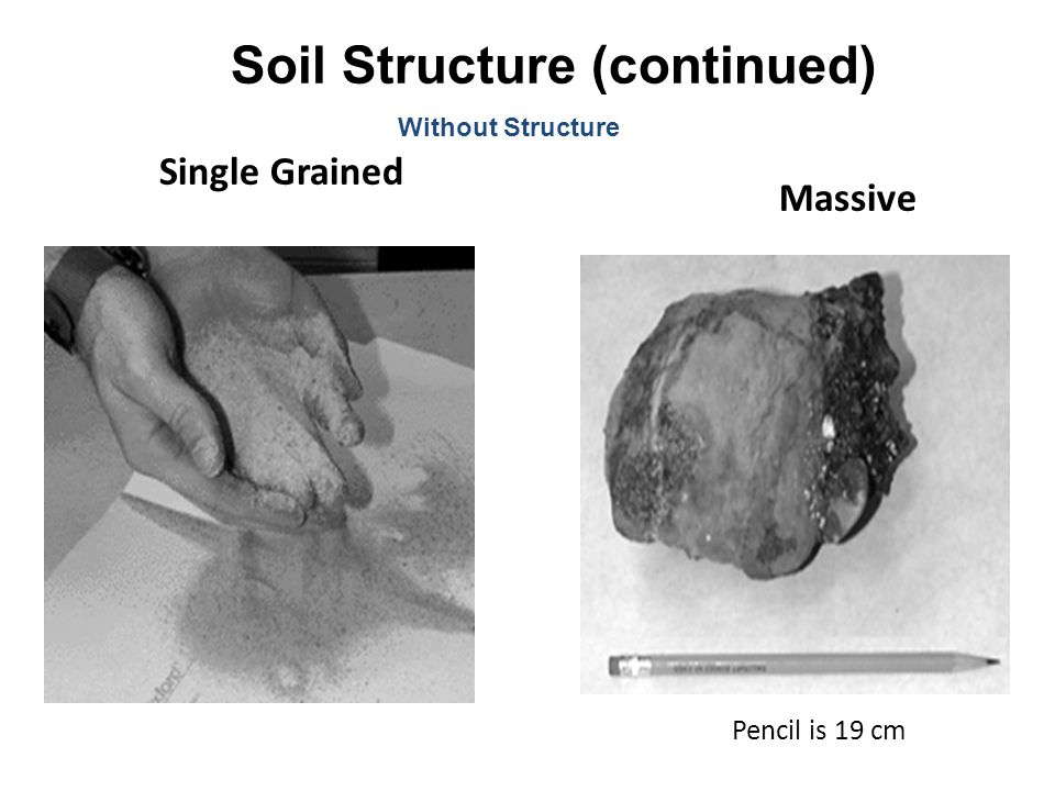 Single Grained Massive Soil Structure (continued) Without Structure Pencil is 19 cm