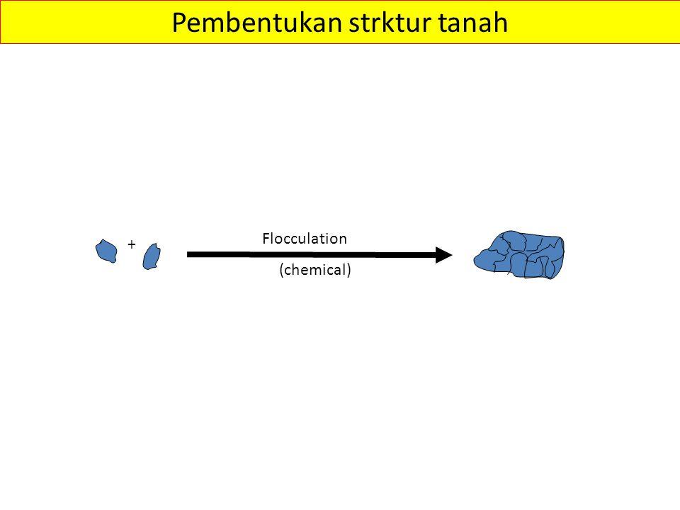 + Flocculation Pembentukan strktur tanah (chemical)