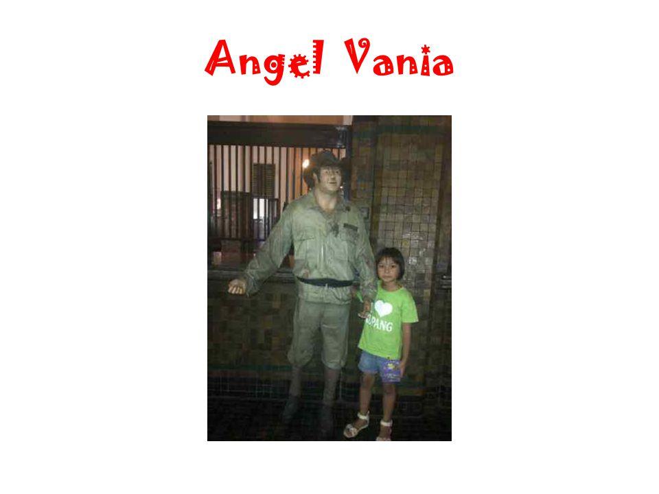 Angel Vania