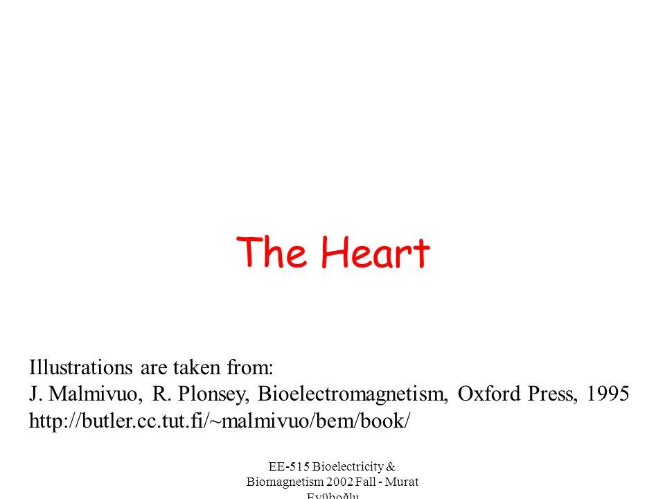 EE-515 Bioelectricity & Biomagnetism 2002 Fall - Murat Eyüboğlu Precordial leads