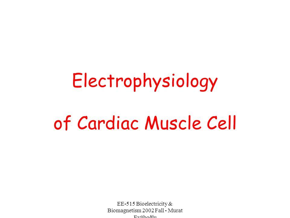 EE-515 Bioelectricity & Biomagnetism 2002 Fall - Murat Eyüboğlu The genesis of the electro- cardiogram
