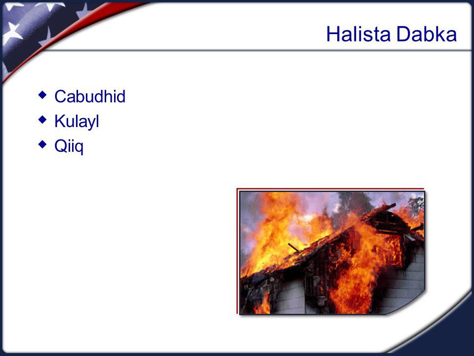 Halista Dabka  Cabudhid  Kulayl  Qiiq