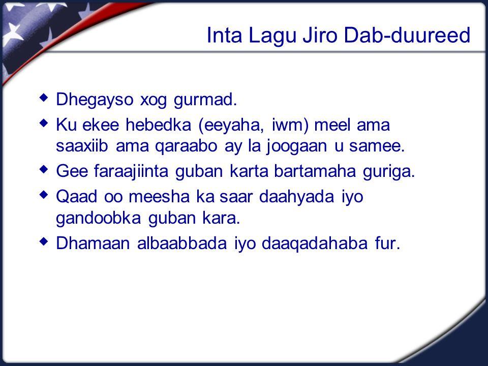 Inta Lagu Jiro Dab-duureed  Dhegayso xog gurmad.