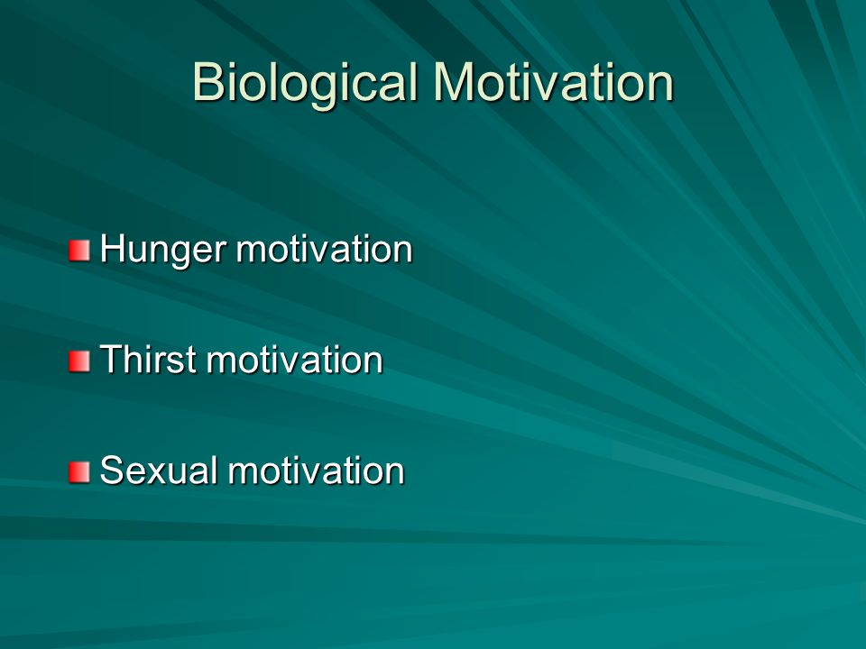 Biological Motivation Hunger motivation Thirst motivation Sexual motivation