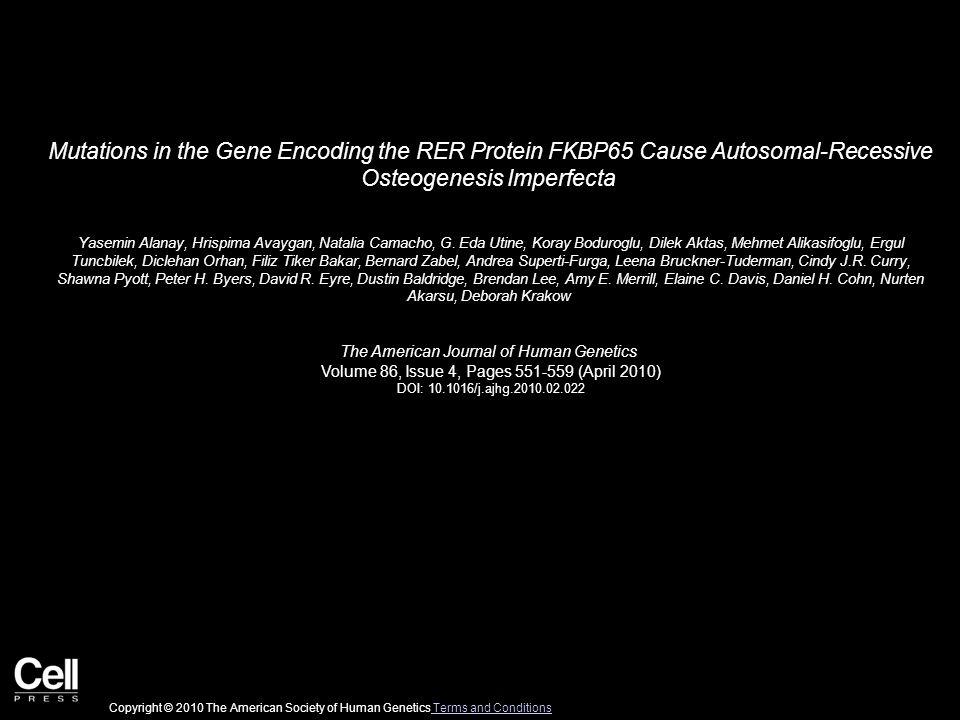 Mutations in the Gene Encoding the RER Protein FKBP65 Cause Autosomal-Recessive Osteogenesis Imperfecta Yasemin Alanay, Hrispima Avaygan, Natalia Camacho, G.