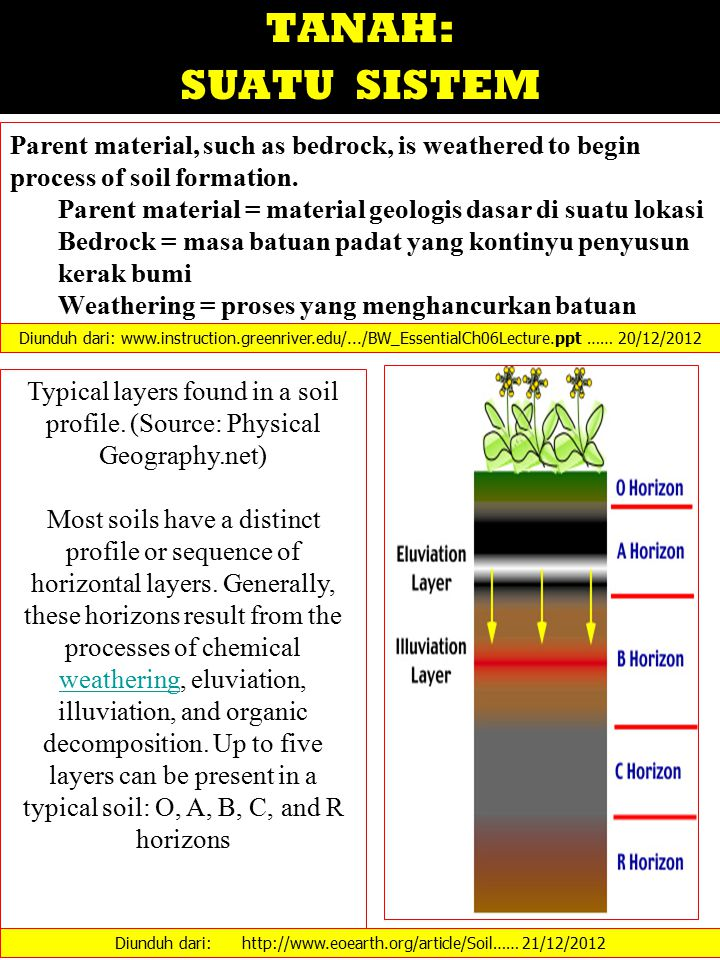 TANAH: SUATU SISTEM Parent material, such as bedrock, is weathered to begin process of soil formation.