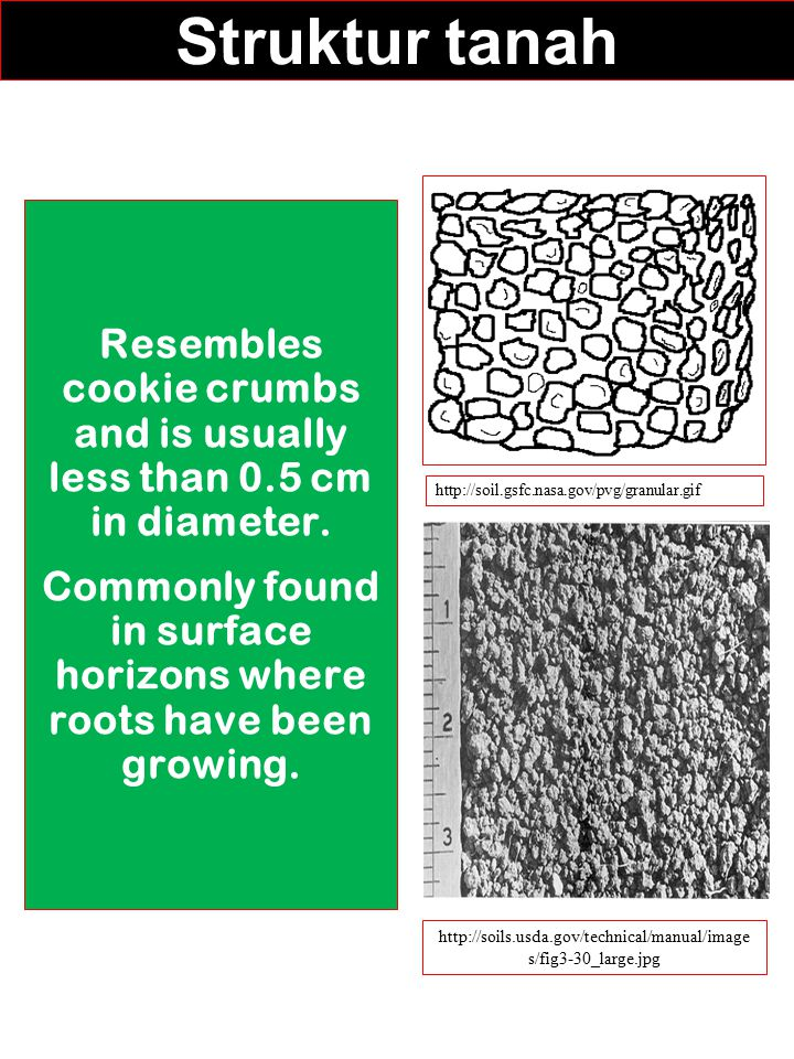Struktur tanah Resembles cookie crumbs and is usually less than 0.5 cm in diameter. Commonly found in surface horizons where roots have been growing.